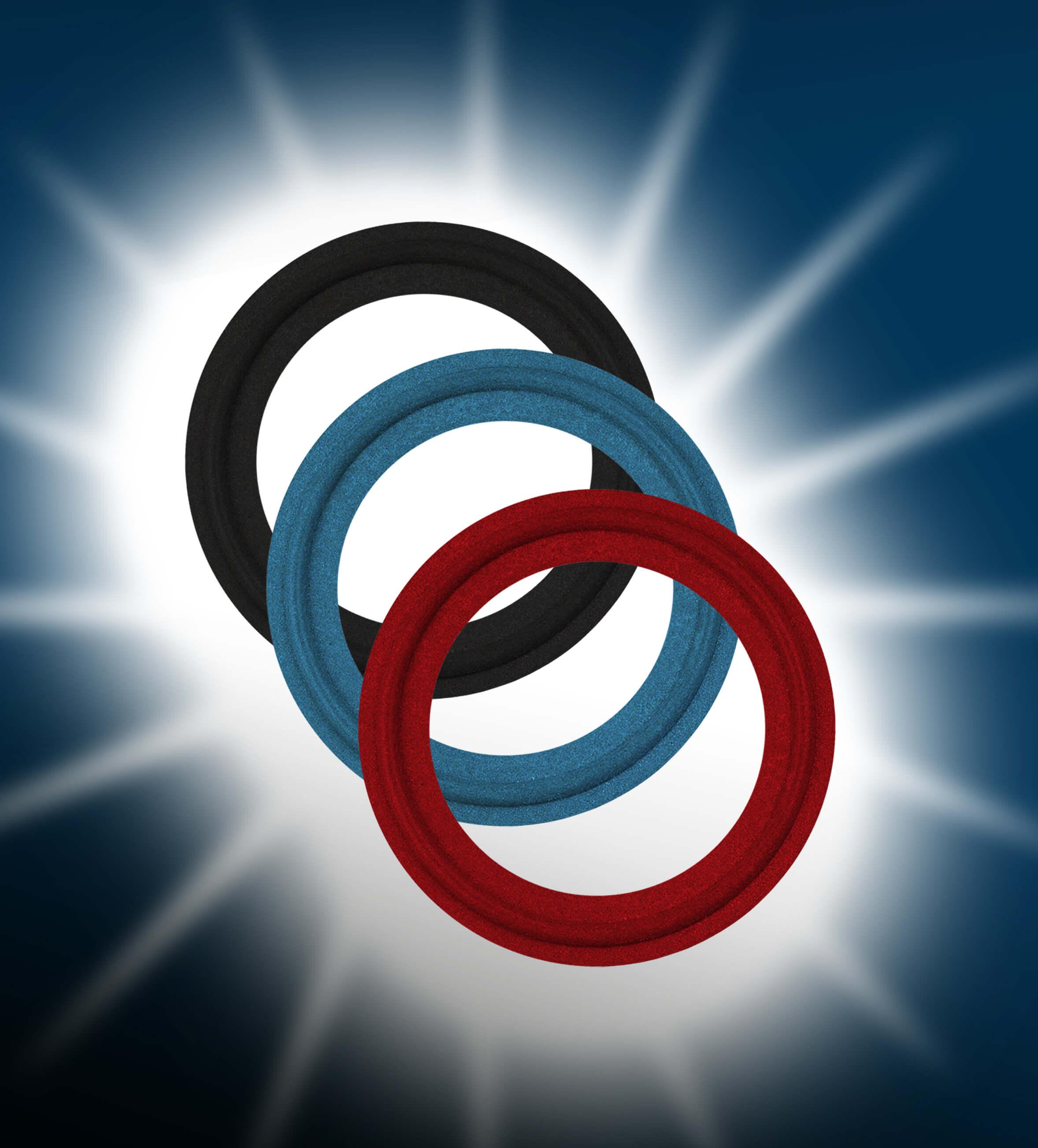 Encapsulated O Ring
